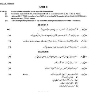 Punjabi Subjective